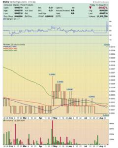 inversiones a corto plazo NSAV